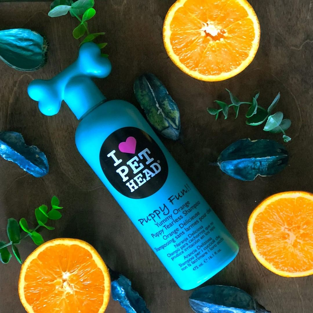 Pet Head Puppy Fun Yummy Orange Scented Tearless Shampoo Perfect For Puppies Extra Gentle And Free Of Harsh Chemicals 475ml